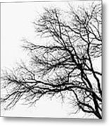 Bare Tree Silhouette Metal Print