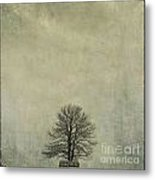 Bare Tree. Vintage-look. Auvergne. France Metal Print