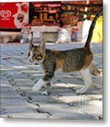 Bargain Hunter Metal Print