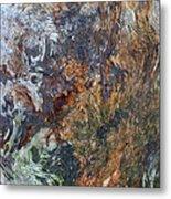Bark Abstract Metal Print