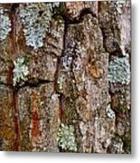 Bark At Me Metal Print