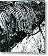 Barking Up At The Sky Metal Print