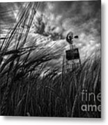 Barley And The Pump Mono Metal Print