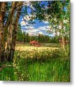 Barn In The Meadow Metal Print