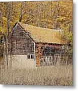 Barn With Autumn Leaves Metal Print