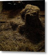 Barrow And Hay Metal Print by Miguel Capelo