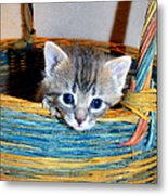 Basket Of Love Metal Print