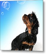 Bathtime Fun Metal Print by Jane Rix