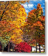 Battle Of The Maples Metal Print