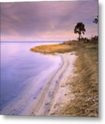 Beach Along Saint Josephs Bay Florida Metal Print