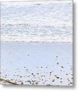 Beach Detail On Pacific Ocean Coast Metal Print by Elena Elisseeva