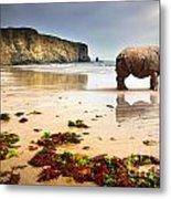 Beach Rhino Metal Print by Carlos Caetano