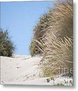 Beach Sand Dunes II Metal Print