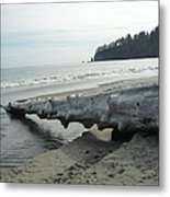 Beach Wood Metal Print