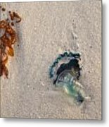 Beached Metal Print by Charles Warren