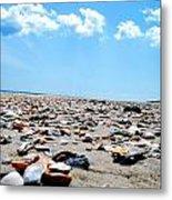 Beachy Delight Metal Print