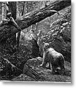 Bear Hunt, 1876 Metal Print by Granger