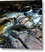 Bear River 2 Metal Print