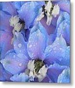 Beautiful Blue Flowers Metal Print