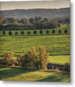 Beautiful Landscape With Trees And Field Metal Print