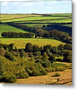 Beautiful Somerset Metal Print