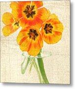 Beautiful Tulips Metal Print