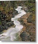 Beauty Creek, Banff National Park Metal Print