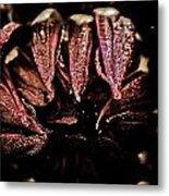 Beauty In Dark Metal Print by Terrie Taylor
