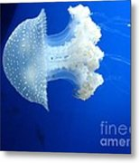 Beauty In The Blue Metal Print