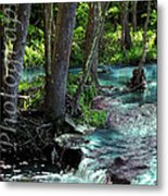Beauty In The Sticks Metal Print