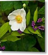 Beautyberry And Anemone 2 Metal Print