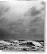Beauty's Dark And Deep Metal Print