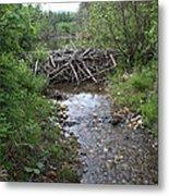 Beaver Dam Metal Print
