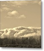 Bed Of Clouds Over Georgia Meadow Metal Print