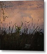 Bedding Down For Evening Metal Print