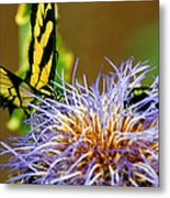 Bee And The Butterfly Metal Print