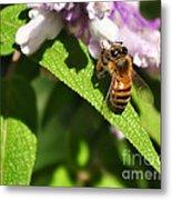 Bee At Work Metal Print by Kaye Menner