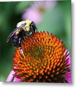 Bee-ing Happy Metal Print