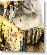 Bee Keeper Metal Print