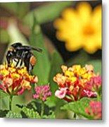 Bee On Lantana Flower Metal Print
