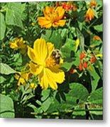 Bees Again Metal Print