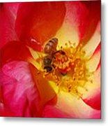 Beetobee Metal Print