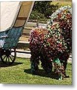 Begonia Horse Metal Print