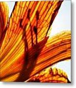 Behind The Petals Metal Print