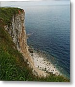 Bempton Cliffs 4 Metal Print