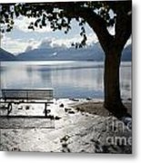 Bench And Tree On The Lakefront Metal Print