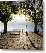 Bench And Trees On The Lake Front Metal Print