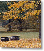 Bench In The Autumn Landscape Metal Print