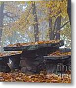 Benches And Table In Autumn Metal Print