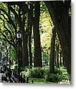 Benches Trees And Lamps Metal Print